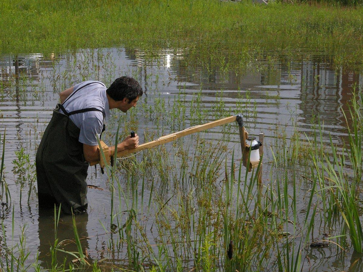 A man collects a water sample in the Chauveau stormwater basin